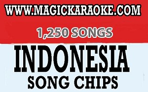 Magic Sing Indonesia Song Chip - 1,250 Songs