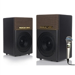 Magic Sing KP650 PRE AMP Active STEREO Speaker System